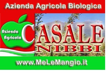 Casale Nibbi